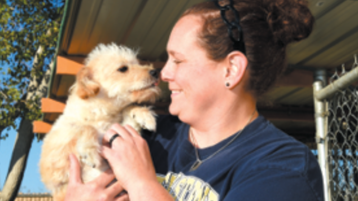 Adopt-A-Pet at Edwards Team Rescue puppy