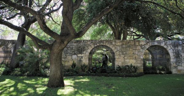 San Antonio Living Parks
