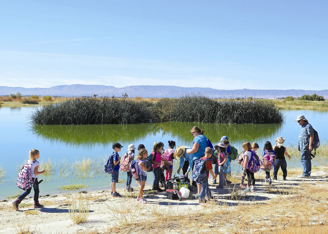 Piute Ponds, Edwards Air Force Base Parks and Recreation