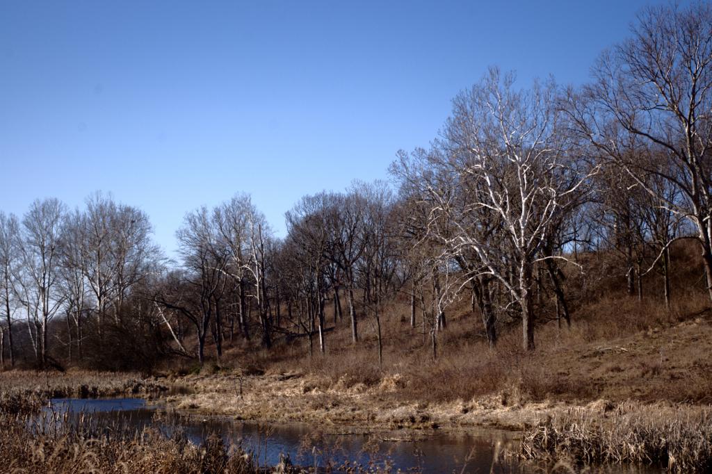 Prophetstown State Park, site of the original Prophetstown.
