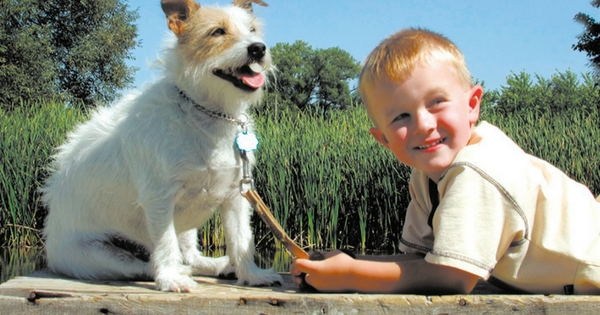 NB Ventura Family Resources Pets