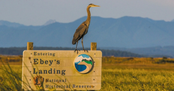 Whidbey Living Parks