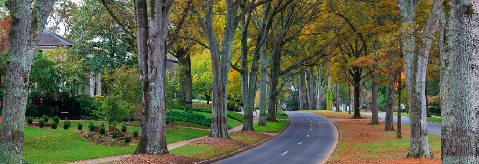 Where Should I Live Near Camp Lejeune North Carolina