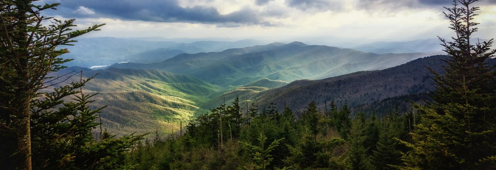 Camp Lejeune Mountains