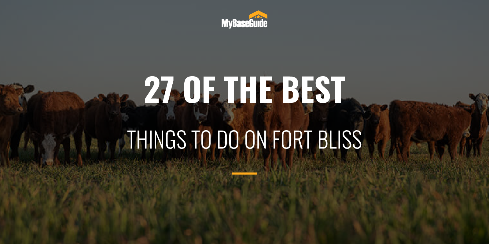 Best Things to Do Fort Bliss
