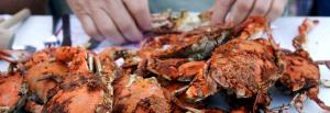 Seafood Restaurants Near Fort Meade