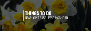 Things to Do Near Joint Base Lewis-McChord