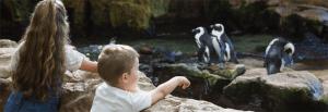 Little Rock Zoo, Little Rock, AR