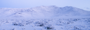 Nellis AFB Weather in the Winter