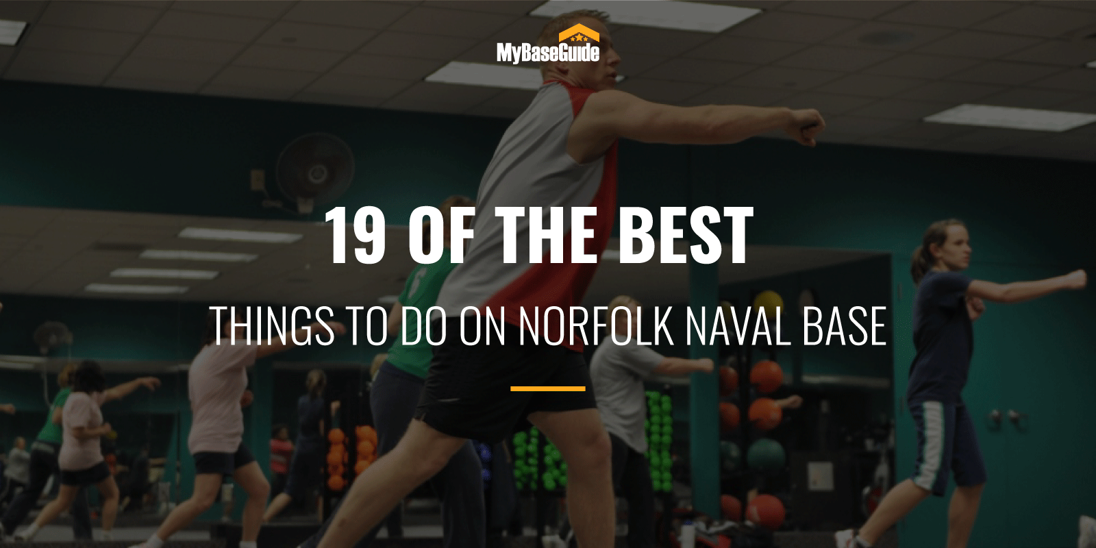 Best Things to Do NB Norfolk