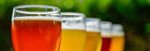 Tampa Bay Breweries