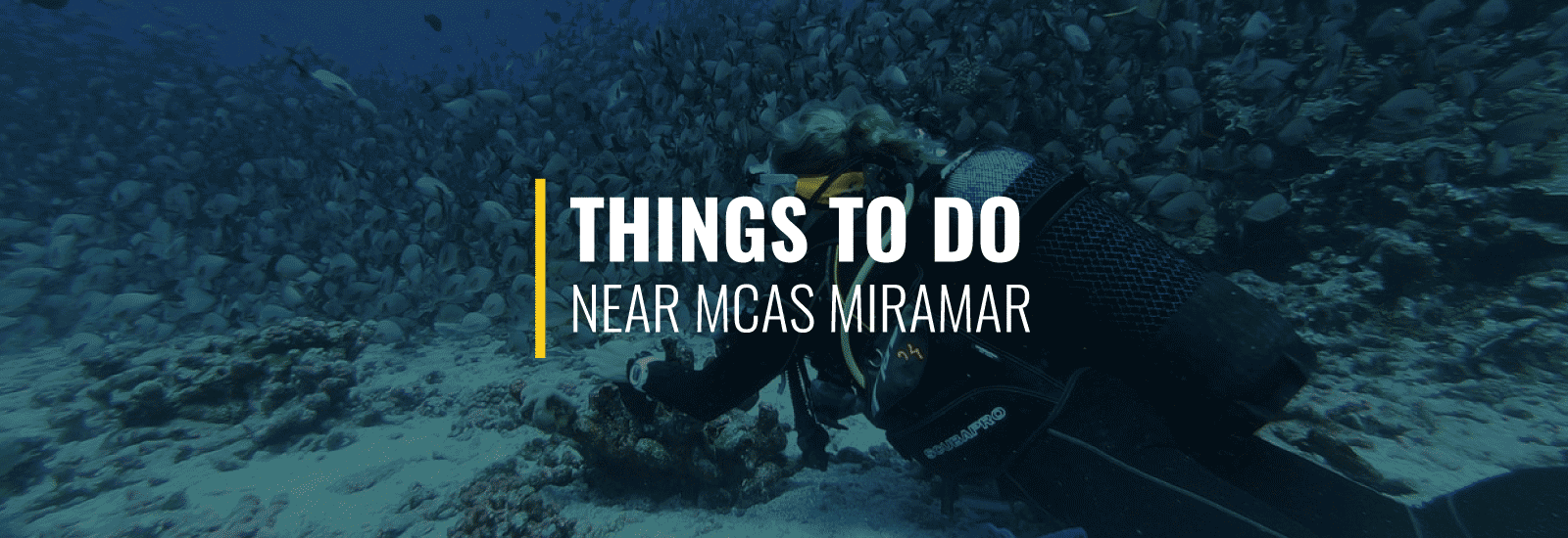 Things To Do MCAS Miramar