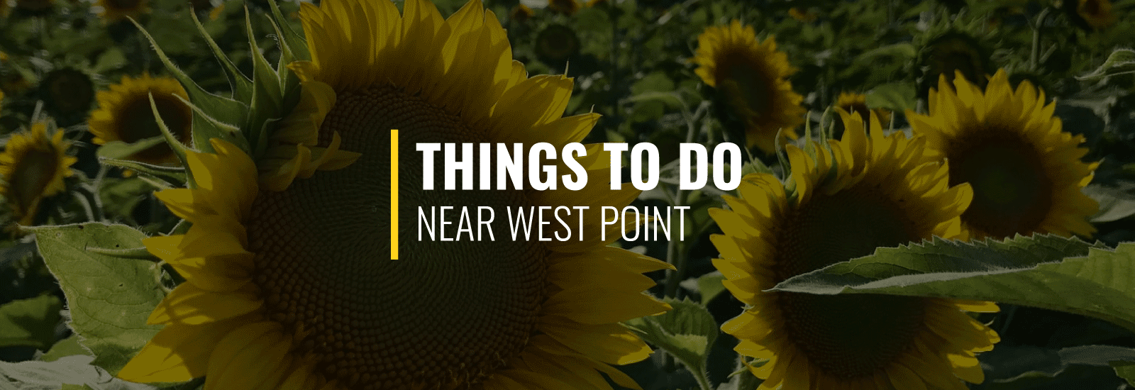 Things to Do in West Point, NY