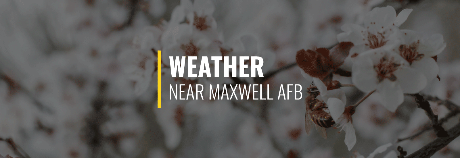 Maxwell AFB Weather