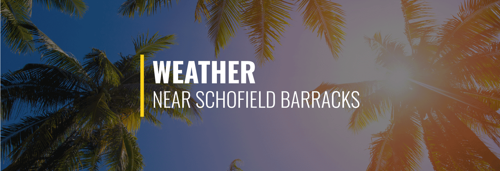 Schofield Weather