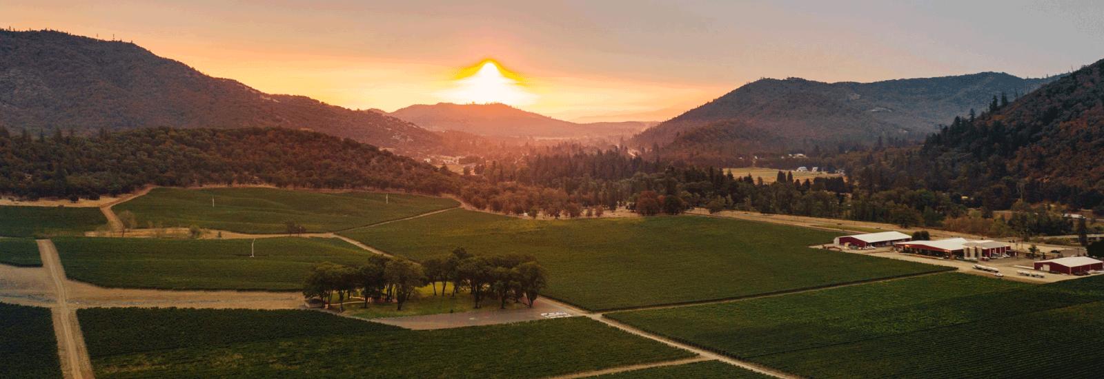 Del Rio Vineyards