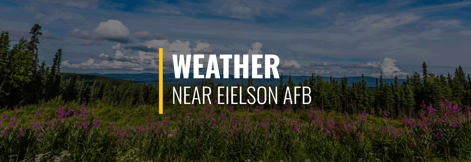 Eielson AFB Weather