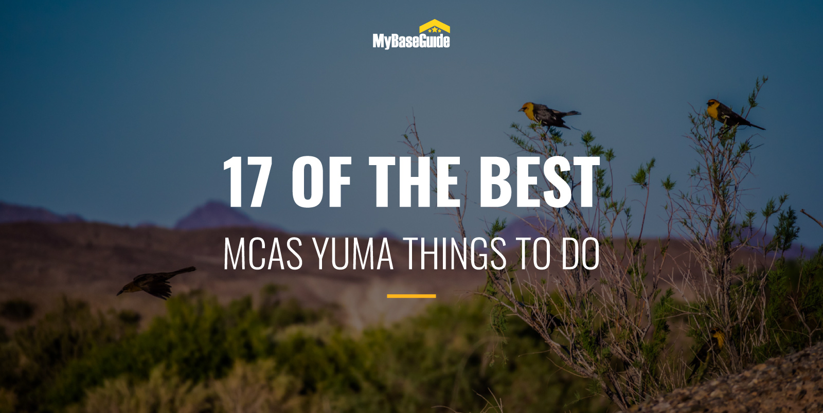 17 Of the Best MCAS Yuma Things to Do